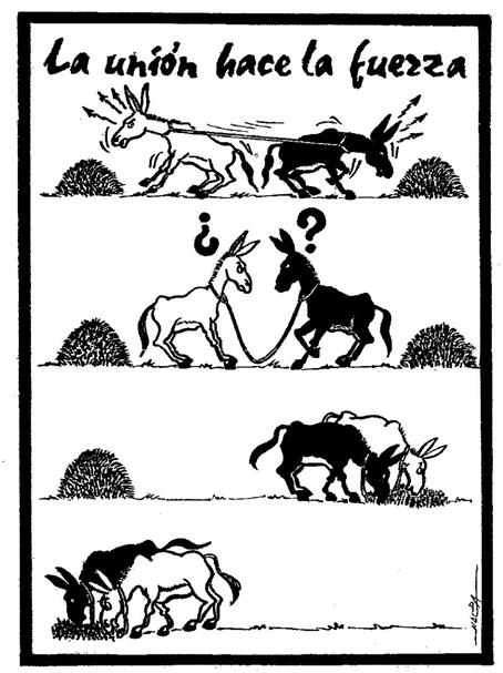 Dibujo de los BURROS